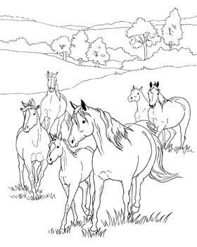 Coloriage cheval dans la prairie