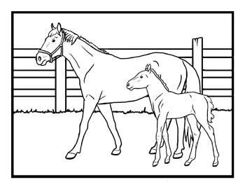 Coloriage chevaux poneys