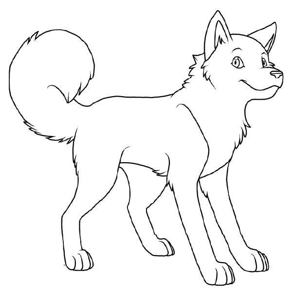 coloriage chien husky imprimer