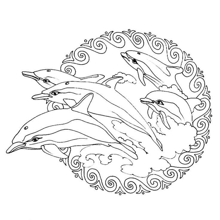 Coloriage Mandala Tortue A Imprimer.Coloriage Mandala Tortue Et Dauphin Laborde Yves