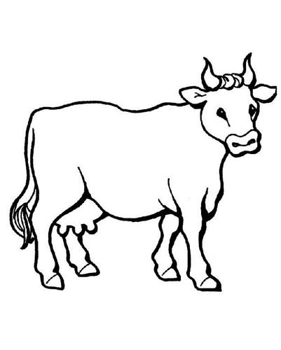 Coloriage d'une vache imprimer