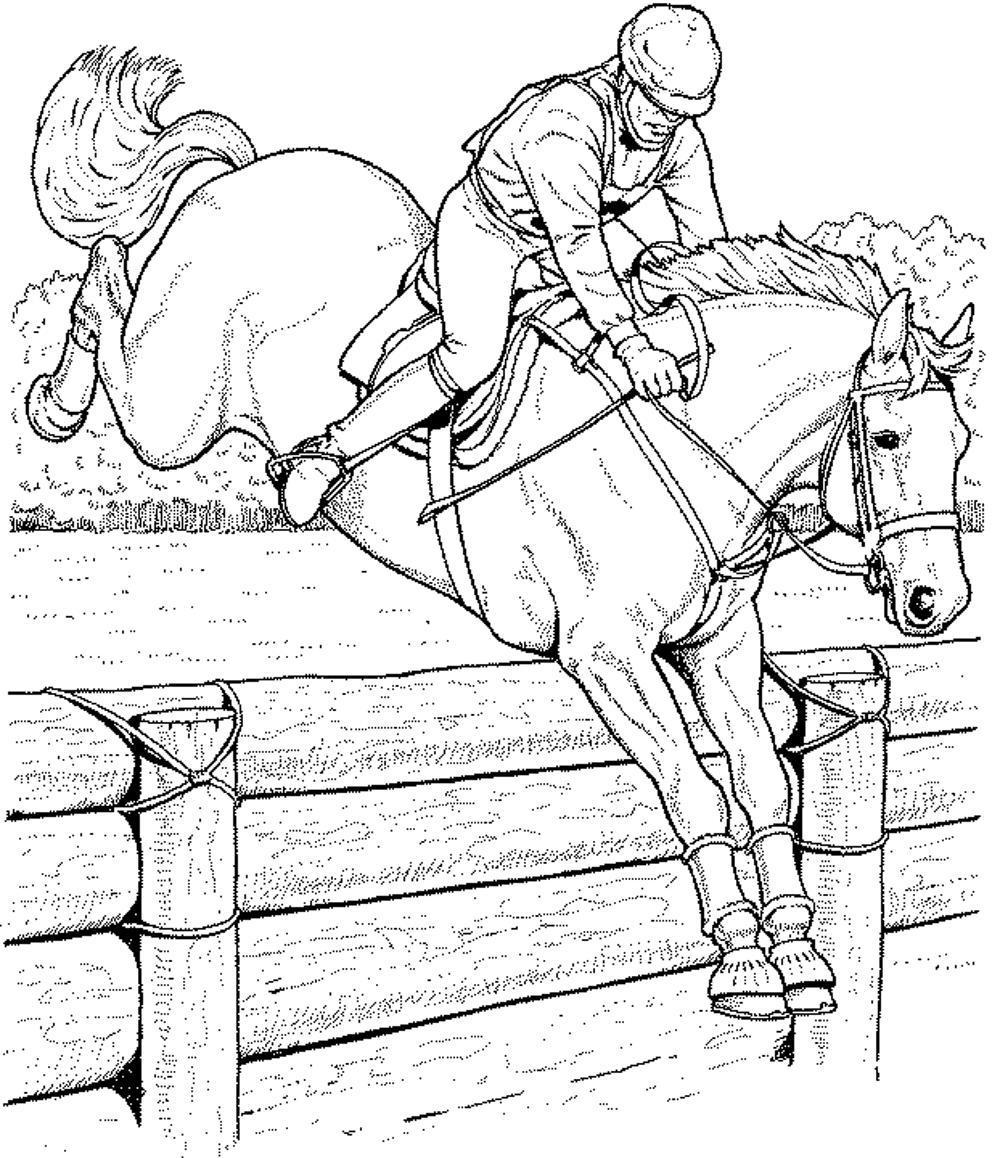 coloriage de chevaux qui saute a imprimer - Coloriage De Cheval