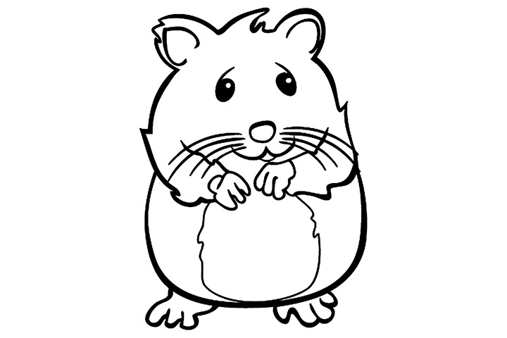 Coloriage de hamster en ligne