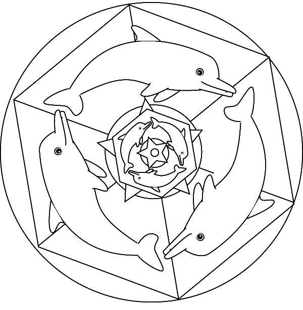 Coloriage de mandala dauphin