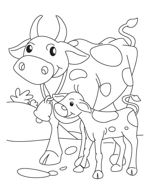 Coloriage de vache et son veau