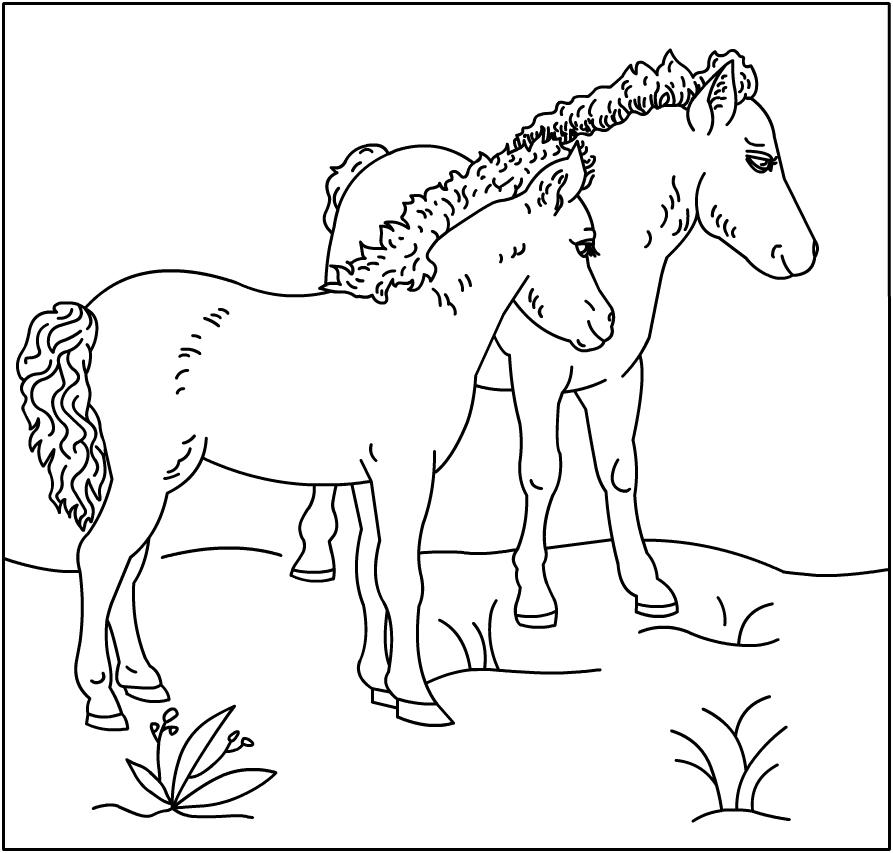 Coloriage gratuit en ligne cheval