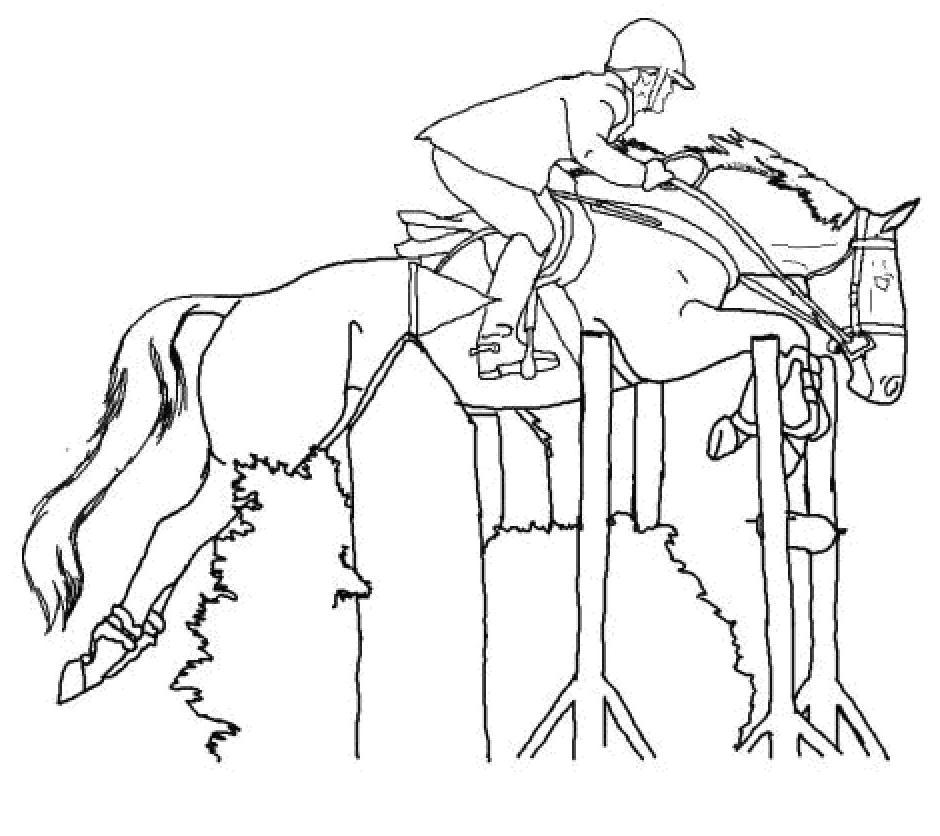 Coloriage a imprimer de cheval qui saute 1001 animaux - Dessin cheval a imprimer ...