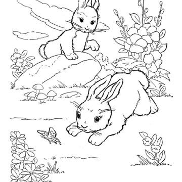 Coloriage lapin jardin