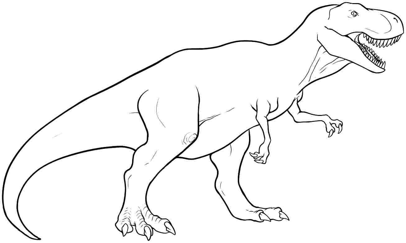 Coloriage tyrex dinosaure